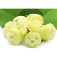 Wax apple - জামরুল - 500g