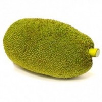 Raw Jackfruit (Kathal) কাঁঠাল - कटहल  - 500g